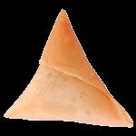 Chicken Cheese Samosa